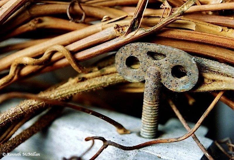 Old grape vine wreath on wood hand cranked washing ringer.