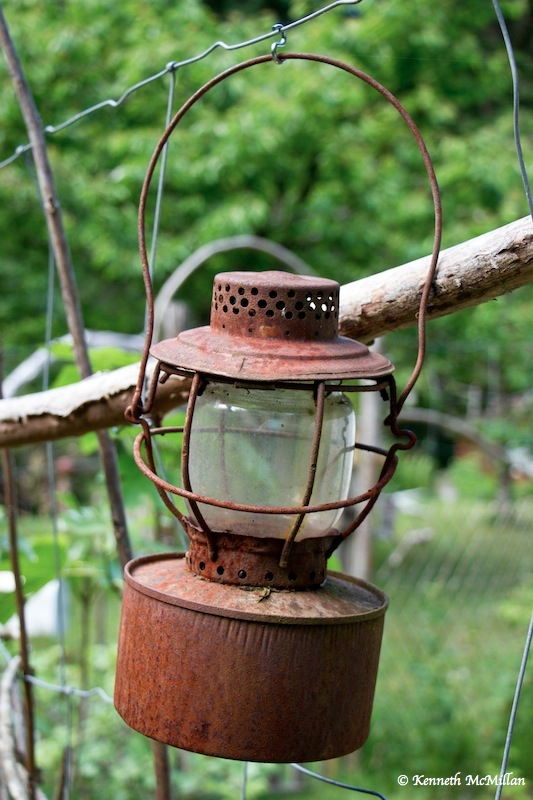 An old kerosene lantern we found in the bush
