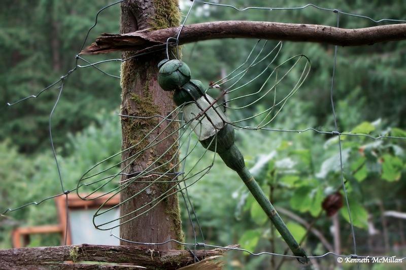 Dragonfly Lantern