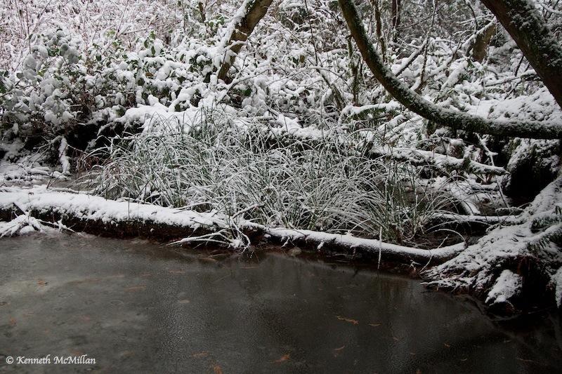 2013 Winter Snow 021_watermarked