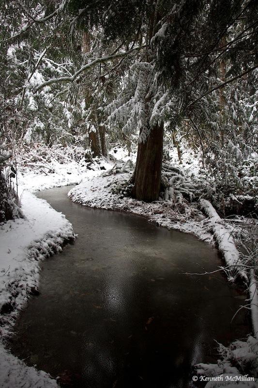 2013 Winter Snow 022_watermarked