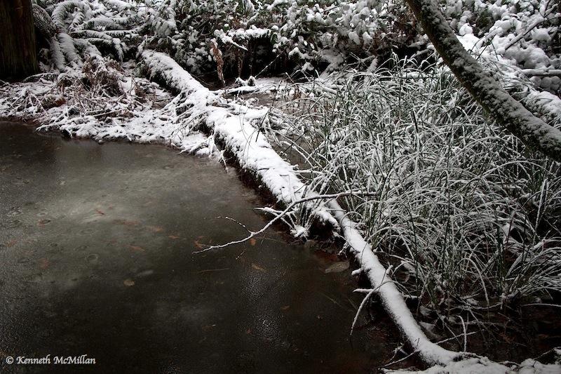 2013 Winter Snow 023_watermarked