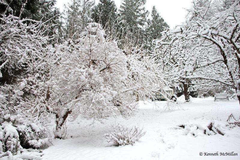 2013 Winter Snow 04_watermarked