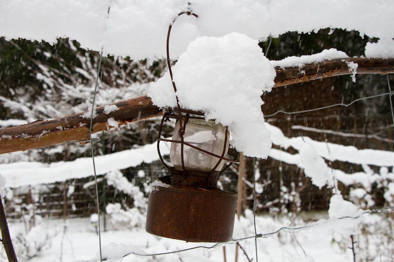 Snowy Fence Find 1