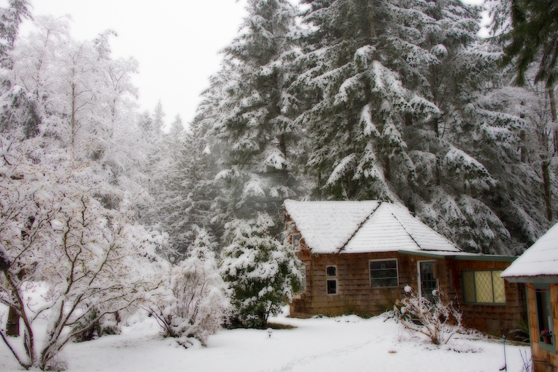 Winter 2014 14