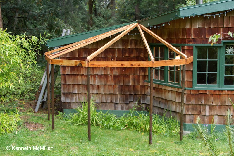 catio-1_watermarked